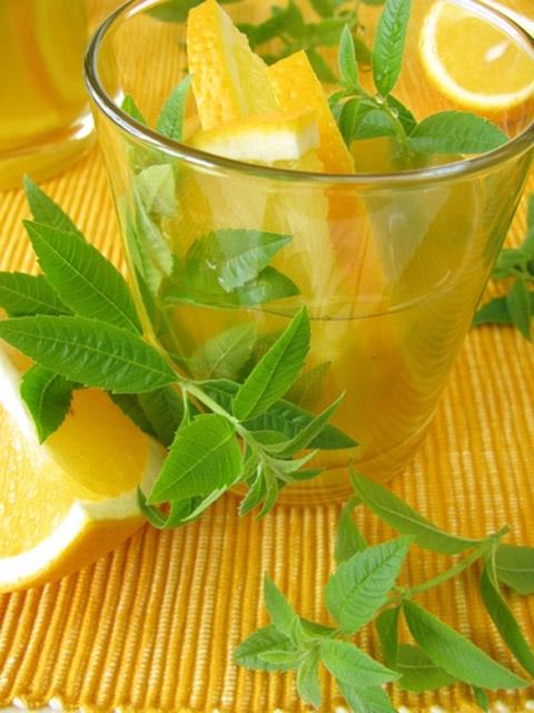 Limonlu su içmek için 20 sebep galerisi resim 20