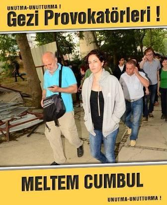 Gezi provokatörleri: Unutma, unutturma galerisi resim 21