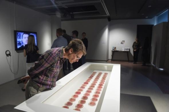 Elma dilimlerinden yapay kulak yaptılar galerisi resim 1