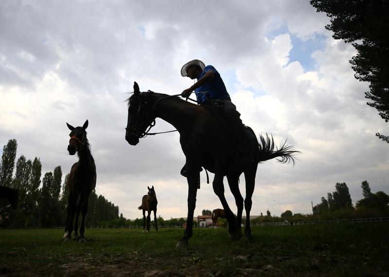 Şampiyon atların yaylası: Ereğli galerisi resim 1