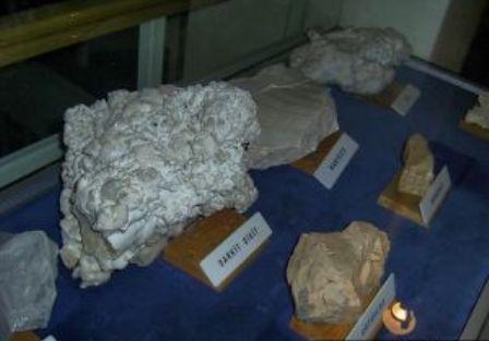 Koyunoğlu Müzesi galerisi resim 8