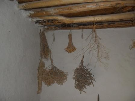 Çatalhöyük galerisi resim 24