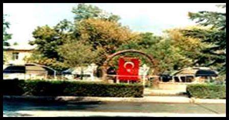 Konya ilçeleri ( Sarayönü ) galerisi resim 3