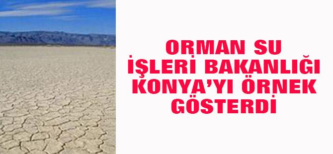Orman Su İşleri Bakanlığı Konya'yı örnek gösterdi