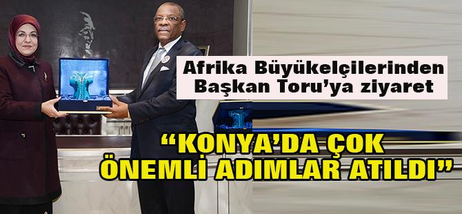 Afrika Büyükelçilerinden Başkan Toru?ya ziyaret