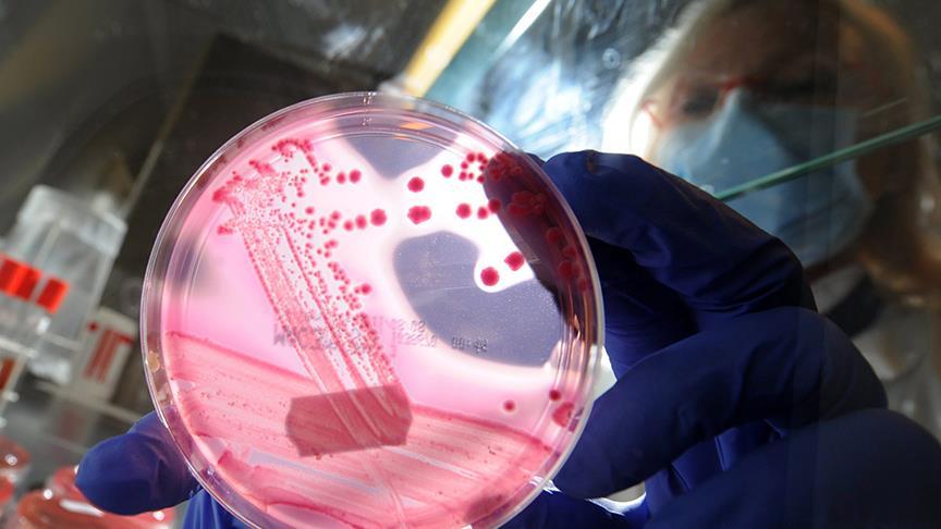 Bakterilerin antibiyotik direncini kırmanın yolu bulundu