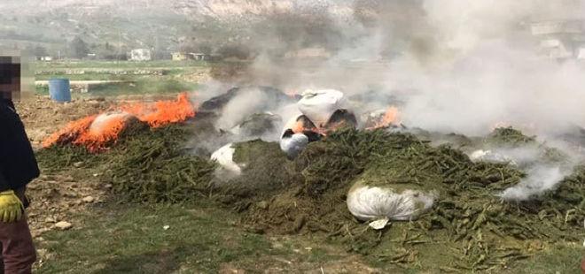 Terör örgütü PKK'nın 30 ton uyuşturucusu imha edildi