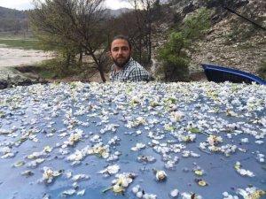 Beyşehir'e ceviz büyüklüğünde dolu yağdı