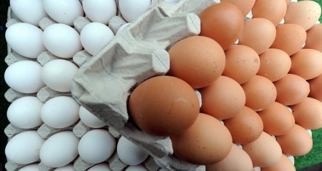 Böcek ilaçlı yumurtalara Hong Kong ve İsviçre'de de rastlandı