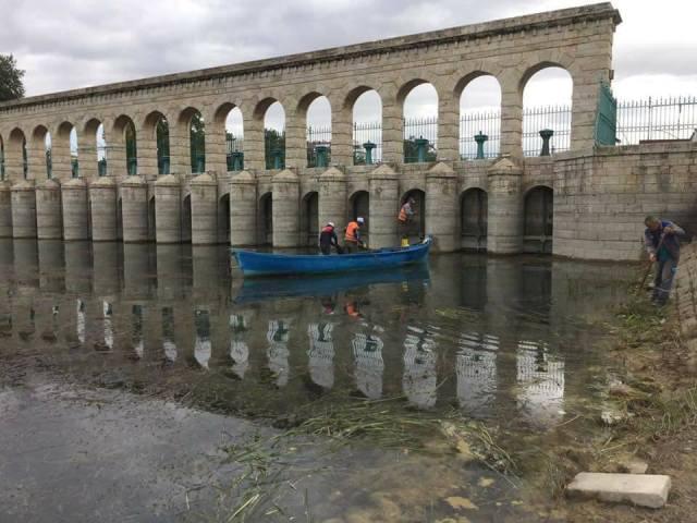 Beyşehir'in göl sahilinde temizlik mesaisi