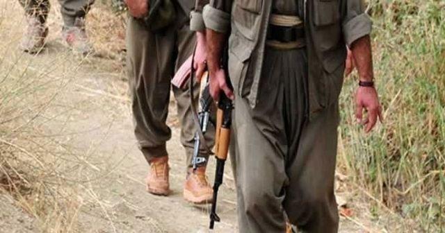 Şırnak, Hakkari, Mardin ve Irak'ta 17 terörist etkisiz hale getirildi