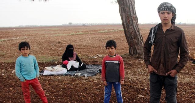 Babası Esad bombasıyla ölen 5 aylık Emira ağaç altında yaşıyor