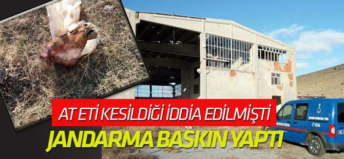 Konya'da at kesildiği iddiasına inceleme