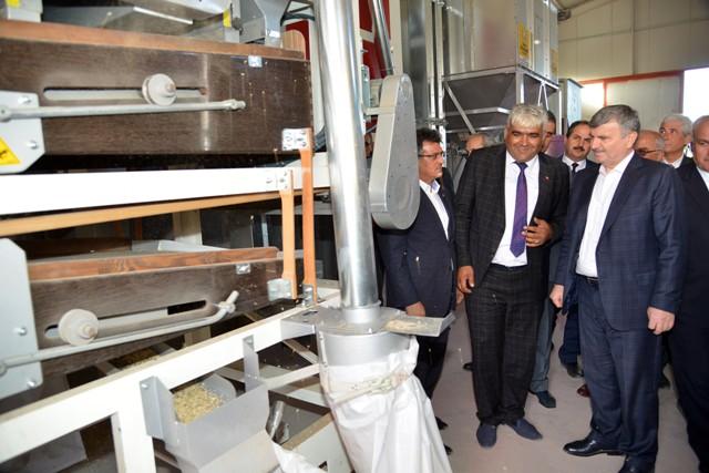 Büyükşehir'den çiftçiye 3.5 yılda 25 milyon liralık fidan ve fide desteği