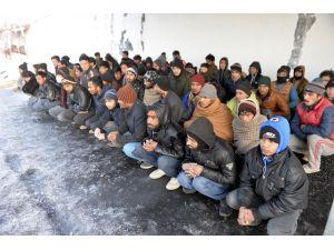 Ardahan'da 79 kaçak yakalandı