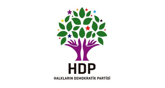HDP'li Ahmet Yıldırım ve İbrahim Ayhan'ın milletvekillikleri düşürüldü