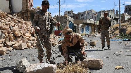BAE'nin Yemen'deki varlığı meşru hükümeti endişelendiriyor