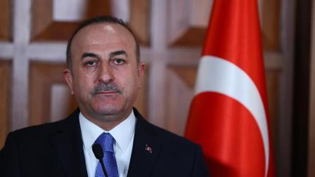 Dışişleri Bakanı Çavuşoğlu: Zeytin Dalı Harekatı barışa giden yolu açmayı amaçlıyor