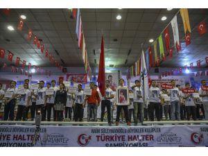 Naim Süleymanoğlu Kulüpler Türkiye Halter Şampiyonası