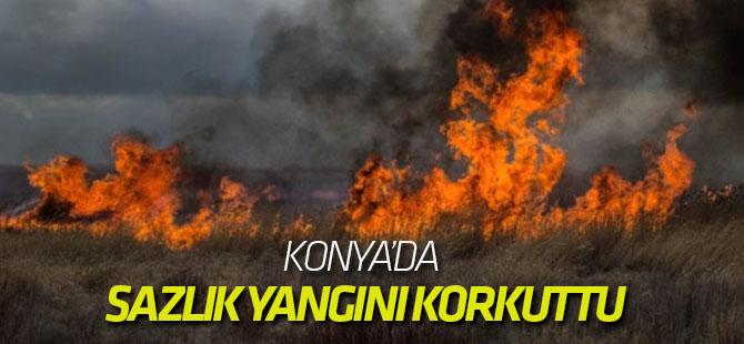 Konya'da Sazlık Yangını