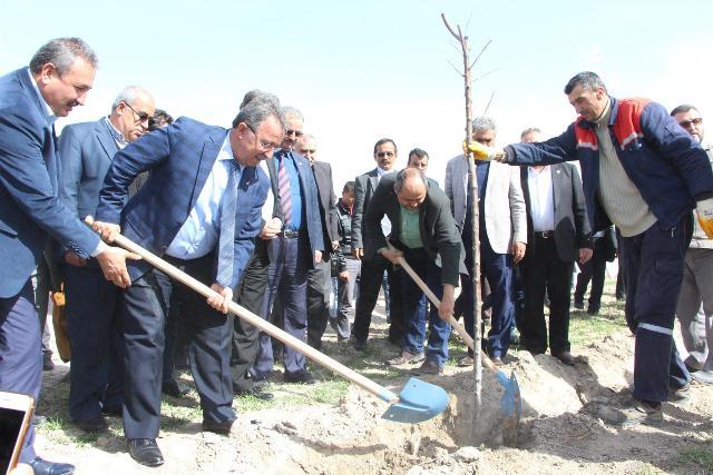 Karatay Belediyesi İsmil'de Afrin Şehitleri Anısına Ağaç Dikti