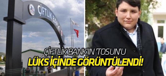 Çiftlik Bank'ın 'Tosun'u lüks içinde görüntülendi!