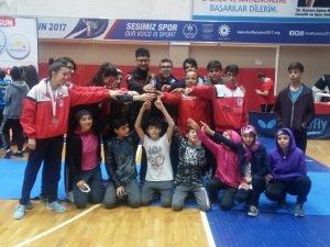 Taekwondoda 7 madalya