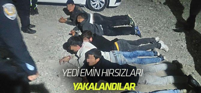 Yediemin hırsızları yakalandı