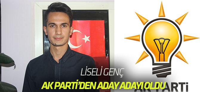 """Liseli genç AK Parti'den """"aday adaylığı"""" başvurusu yaptı"""