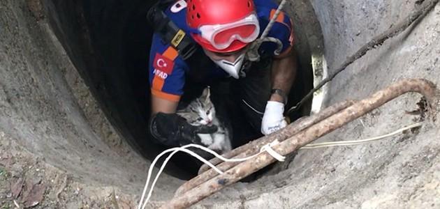 Konya'da kuyuya düşen yavru kedi kurtarıldı