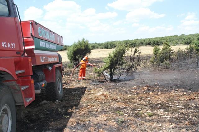 Konya'da orman yangını