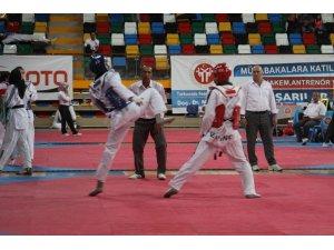 Taekwondo Türkiye Şampiyonası Konya'da  gerçekleştirilecek