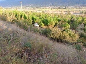 Yoldan çıkan otomobil ağaçlık alana uçtu: 3 yaralı