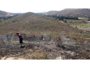 Bodrum'da 6 hektarlık alan kül oldu