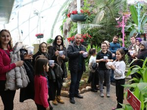 Tropikal Kelebek Bahçesi'ne ziyaretçi ilgisi