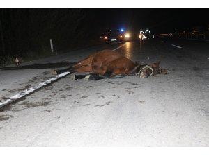 Otomobil ata çarptı: 2 yaralı