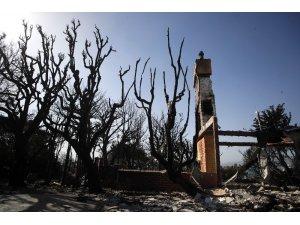 Kaliforniya'da kayıplar aranıyor: 83 ölü