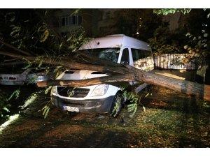 Şiddetli fırtınada ağaç minibüsün üstüne devrildi