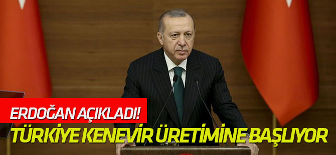 Cumhurbaşkanı Erdoğan açıkladı! Türkiye kenevir üretimine başlıyor