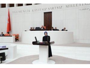 """AK Parti'li Ayvazoğlu: """"Tespit edilen eserlerin bir kısmı da Petersburg Hermitage Müzesi'nde sergilenmektedir"""""""
