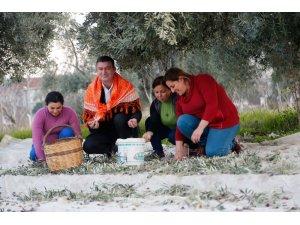 Ümmet Akın'dan Efelerli çiftçilere müjde