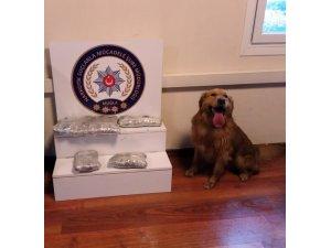 100 bin lira değerinde uyuşturucu ele geçirildi