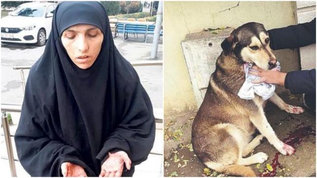 Tuzla'da suçüstü yakalandı... 3 yıldır sokak hayvanlarıyla besleniyor!