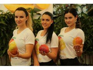 Tanesi 30 lira olan mangonun fidanı da kapış kapış satılıyor