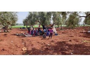 Yeniden yollara düşen Hama ve İdlib'deki mülteciler BM'yi göreve çağırdı