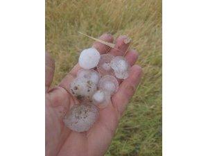 Kulu'daki dolu yağışı ekili alanlara zarar verdi
