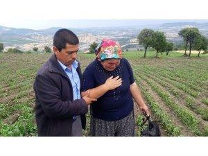 Selendi'de etkili olan dolu yağışı tarım arazilerini vurdu