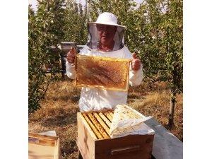 Hisarcıklı arıcıların yüksek bal üretimi beklentisi