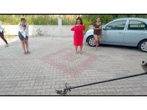 Fethiye'de Diyet Merkezinde yılan yakalama operasyonu
