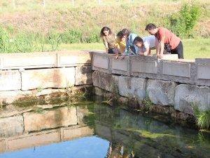 Beyşehir'in su kaynaklarında yaşayan endemik balıklar korunuyor